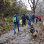 Unerschrockene Spaziergänger trotz miserabelen Wetters
