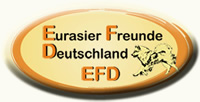 logo-efd